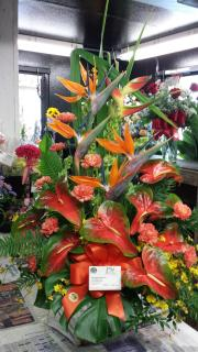 Large Tropical Centerpiece